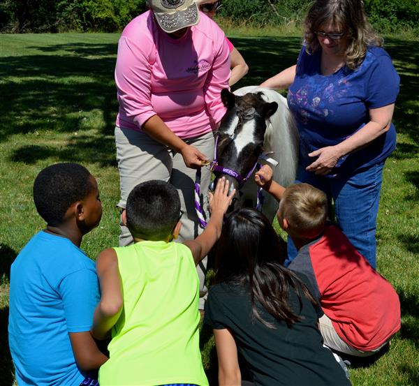 Students pet Mercy the mini horse
