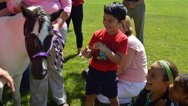 ESY Students with mini therapy horses